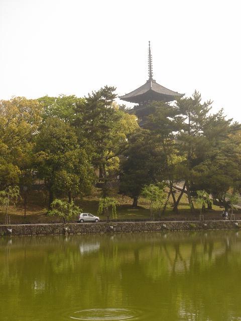 奈良に行ってきました。後編_e0131560_1814566.jpg