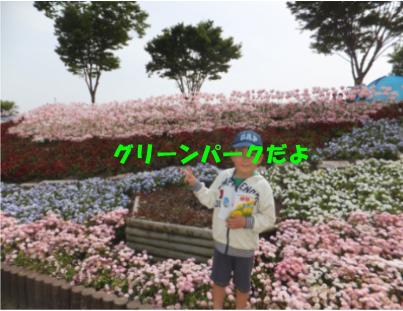 d0082261_06690.jpg