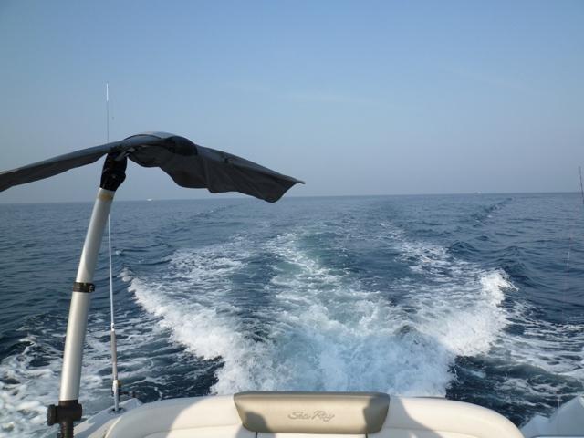 2011 5月 GW 海で遊ぶ~ 其の五 釣り三昧_c0134862_2535493.jpg