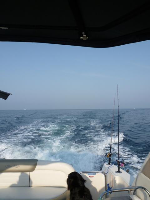 2011 5月 GW 海で遊ぶ~ 其の五 釣り三昧_c0134862_2541195.jpg