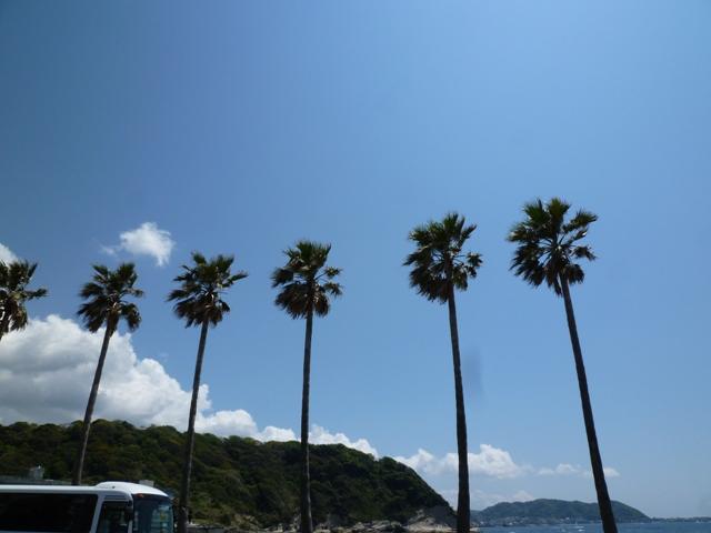 2011 4月 GW 海で遊ぶ~ 其の壱 SEAJAS出航ー!!_c0134862_3231316.jpg