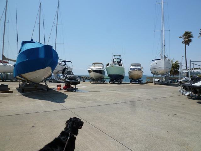 2011 4月 GW 海で遊ぶ~ 其の壱 SEAJAS出航ー!!_c0134862_3241598.jpg