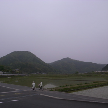 3 MAY 2011_f0112576_055281.jpg