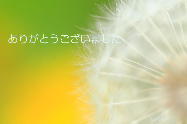 c0145780_1113076.jpg