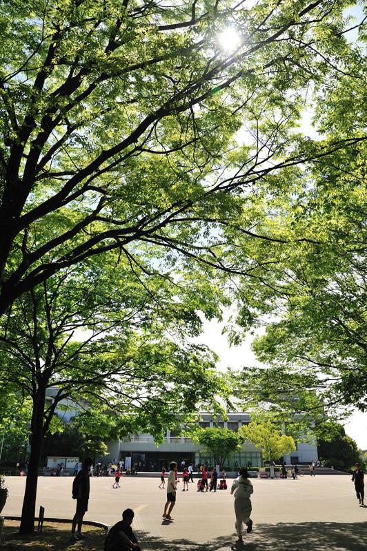 みどらープーさんのひとりごと。        midorer.exblog.jp