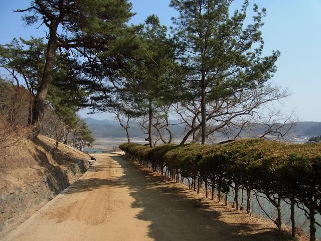 韓国の学問所 陶山書院_d0116009_3464289.jpg