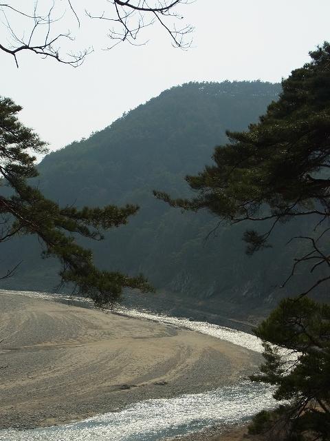 韓国の学問所 陶山書院_d0116009_3494051.jpg