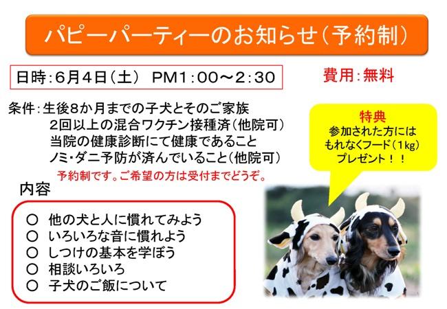 第1回パピーパーティーのお知らせ_d0156734_21211978.jpg