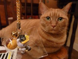 阪神タイガース×キティコラボ根付け猫 しぇる編。_a0143140_23474556.jpg
