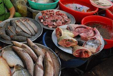 ベトナム旅行記~ニャチャンの市場~_a0175348_17555735.jpg