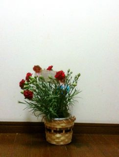 母の日2011_d0076558_10194289.jpg