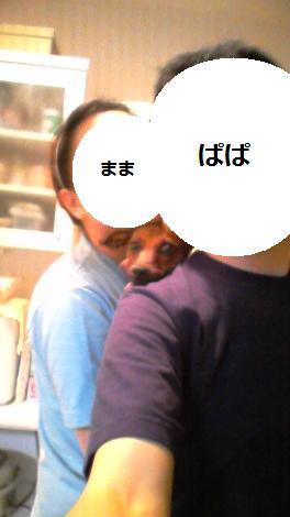 d0150161_21425245.jpg