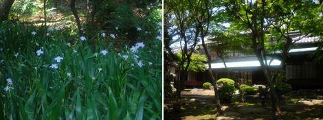旧朝倉家住宅を訪ねて_d0183174_20241253.jpg