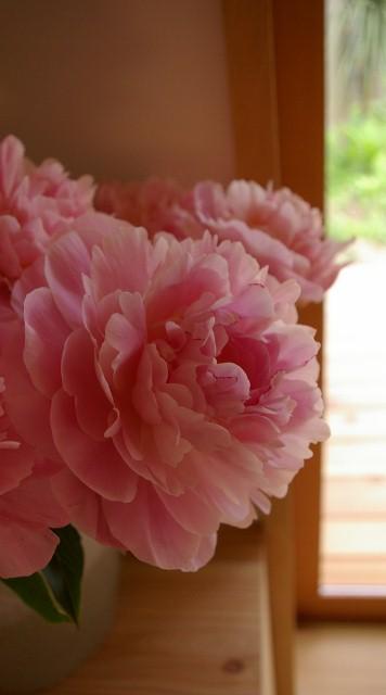 まだお花あります_f0162400_20351070.jpg