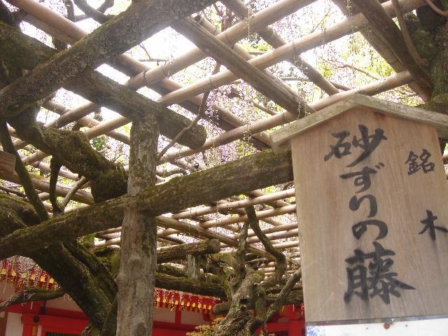 奈良に行ってきました。(最終編)_e0131560_17451573.jpg