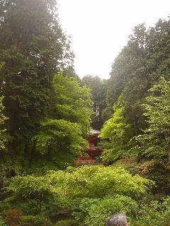 奈良に行ってきました。(最終編)_e0131560_17571917.jpg