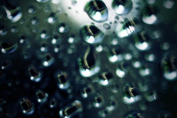 雨_b0199365_1891821.jpg