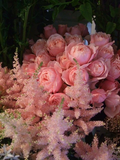 オークリーフ(バラの季節です)_f0049672_17194378.jpg