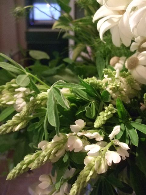 オークリーフ(バラの季節です)_f0049672_17204550.jpg