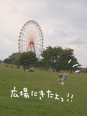 b0092580_1392171.jpg