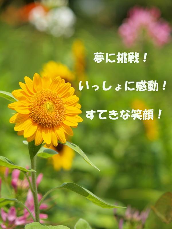 c0221993_8443267.jpg
