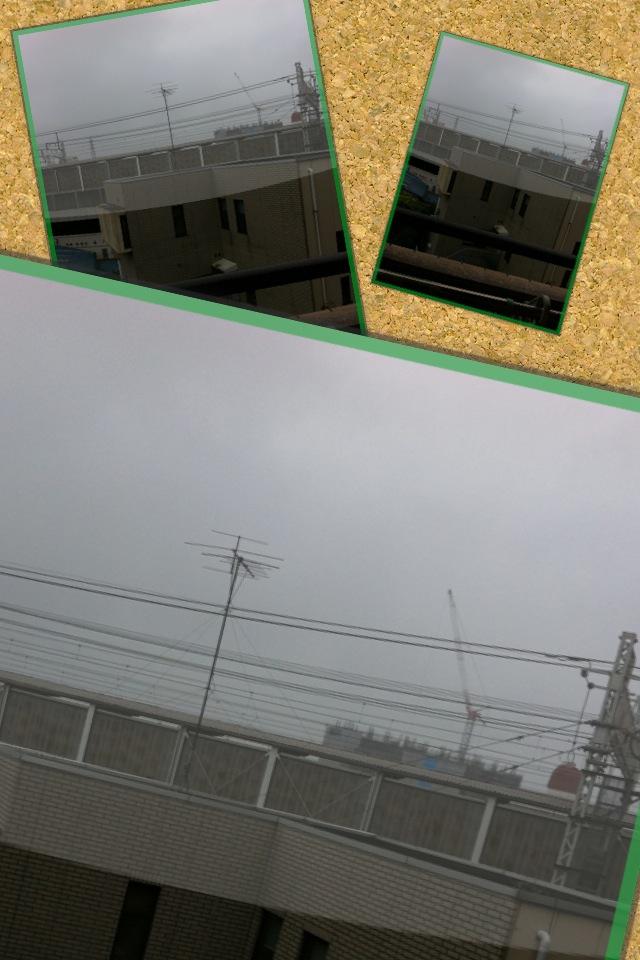 f0202210_11343981.jpg