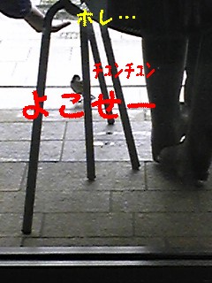 都会_f0148927_2223499.jpg