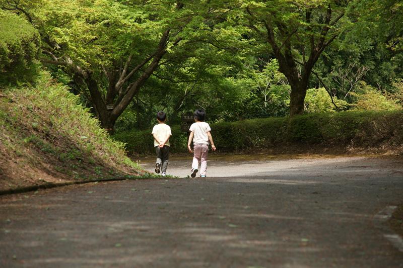 #874 樹木公園  その②_b0177233_514571.jpg