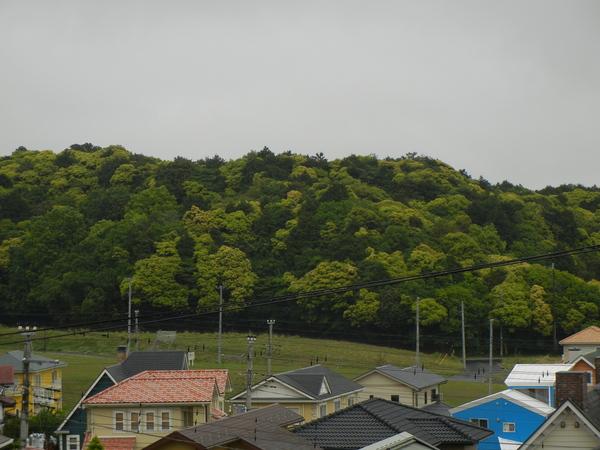 2011年5月12日(木)雨上がり~!_f0060461_10503234.jpg