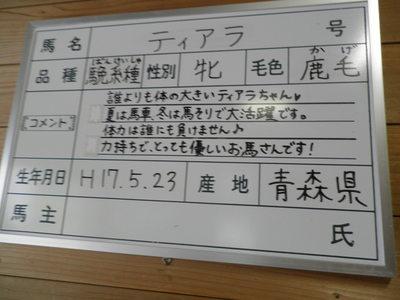 放情記 何がさネばマネ! 『南東北西へ』 _b0209890_2323684.jpg
