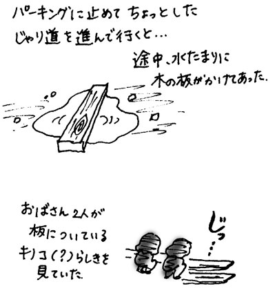 f0036603_1947641.jpg