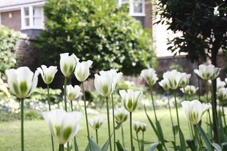 London, Again_e0138008_17403350.jpg