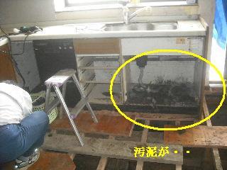 f0031037_2011666.jpg