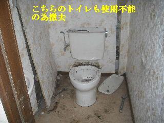 f0031037_2063573.jpg