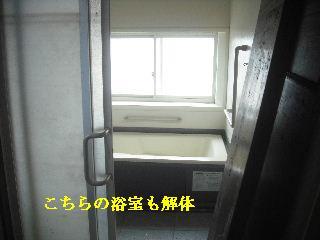f0031037_2072979.jpg