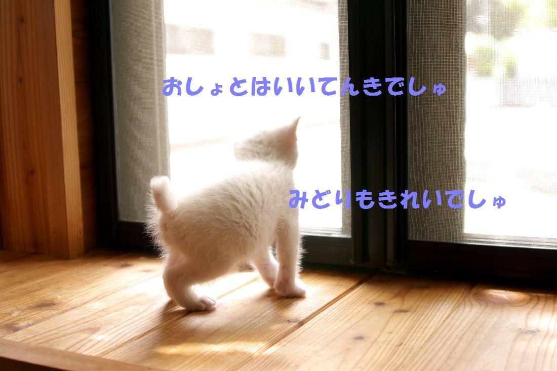 f0197682_22553067.jpg