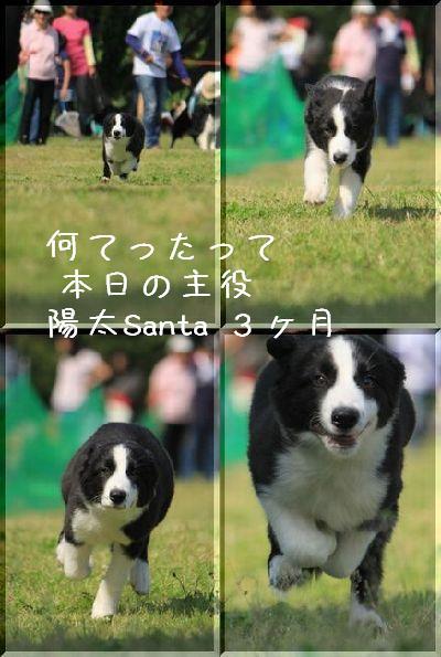 b0101991_21532812.jpg