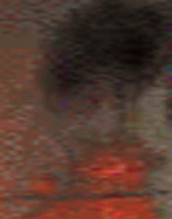 e0103408_17394341.jpg