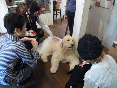 横浜人形の家と山手岩崎ミュージアム_b0107314_1293964.jpg