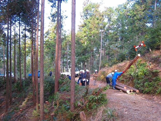 フォーラム(森林・林業の再生/高知県バージョン)_a0051128_20171713.jpg