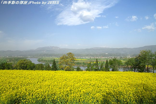 前々から飯山市にある「菜の花公園」へ一度行きたいと思っていました。Leo... 信州飯山・菜の花