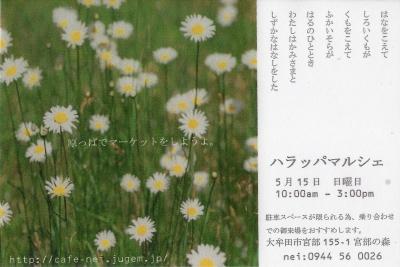 f0194748_0251525.jpg