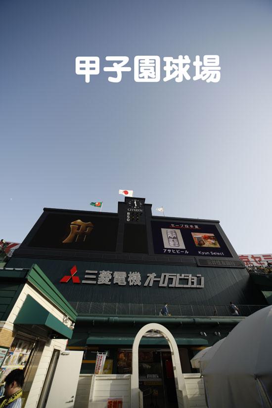 甲子園球場_a0155464_5584598.jpg