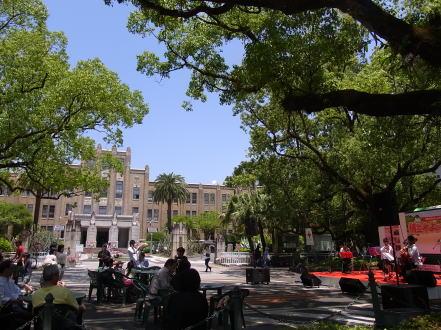 新緑の楠並木通りでは.........._d0127182_1755762.jpg