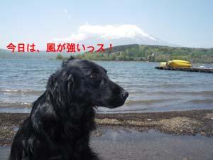 湖畔で遊んだよ!_b0084194_1411621.jpg