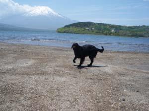 湖畔で遊んだよ!_b0084194_143398.jpg