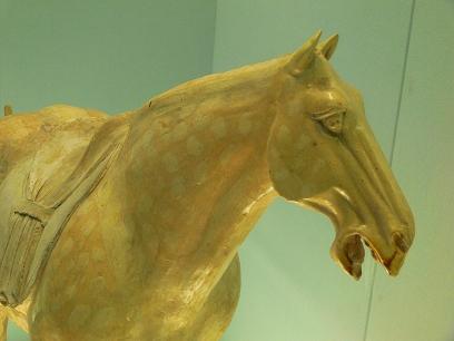 中国出張2010年08月-第二日目-上海博物館_c0153302_1615839.jpg