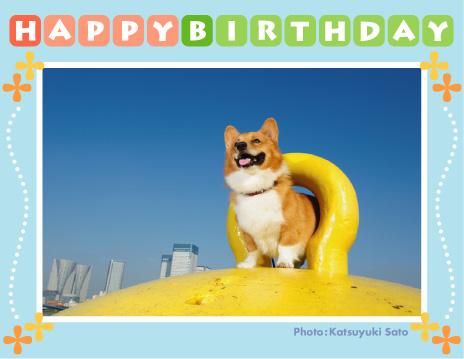 リクくん、お誕生日おめでとう♪_d0102523_10381483.jpg