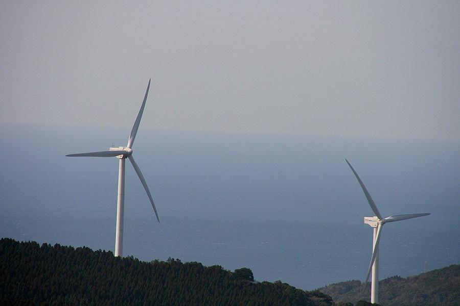 風車と翼_b0060239_11472813.jpg