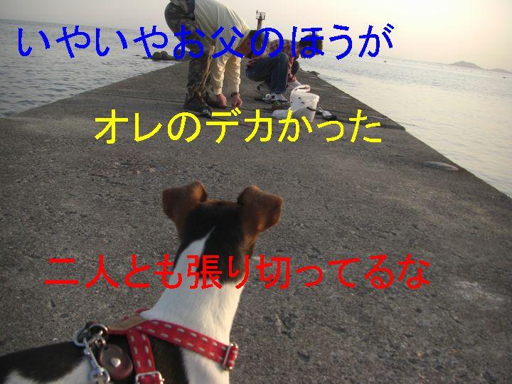 f0053952_1249475.jpg